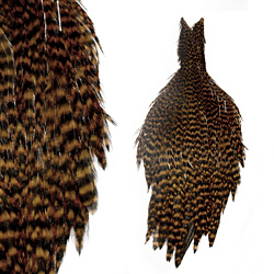 Lakeland Grizzly Hen Capes