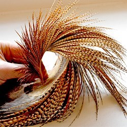 GOLD, SILVER, BRONZE and PRO-GRADE Whiting Genetic Dry Fly Rooster