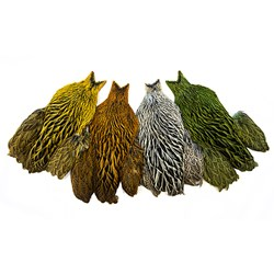 Whiting Brahma Hen Capes