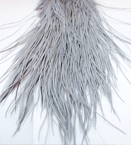 Interesting Badger cock hackle feathers sorry